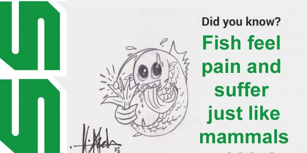 Fish feel pain and suffer just like mammals and birds